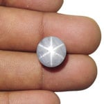 13.82-Carat Ceylonese Star Sapphire with Super Sharp 6-Ray Star