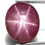 24.49-Carat Large Purplish Red Star Ruby from India (Unheated)
