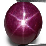 12.94-Carat Natural & Untreated 6-Ray Star Ruby from India