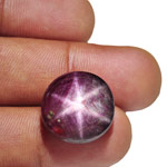 33.62-Carat Dark Purplish Red Star Ruby from India (AIGS)