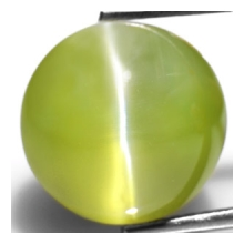 Greenish Yellow Chrysoberyl Cat's Eye from Sri Lanka